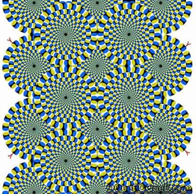 Imagem em Movimento - rotações